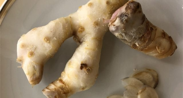 arthritis galangal