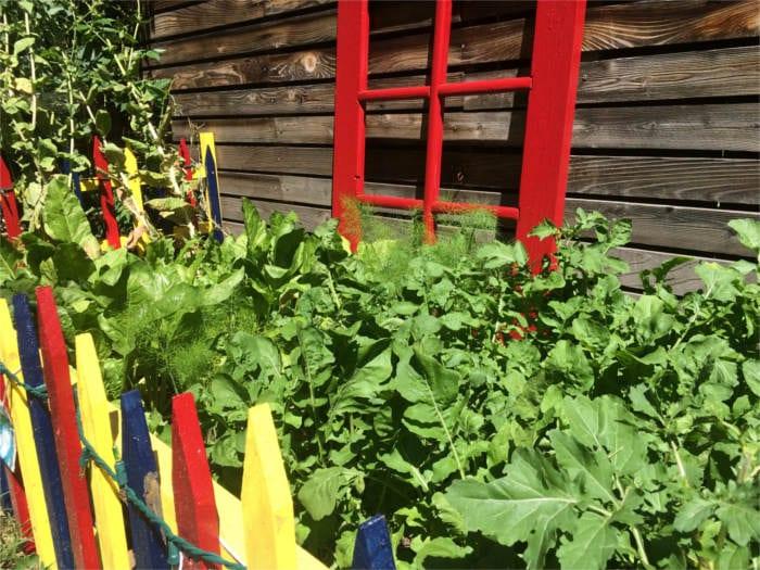 gardening crafts windows