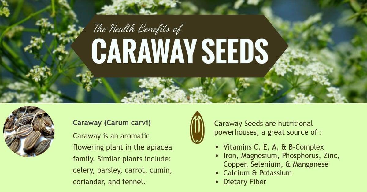 Caraway Seeds: Health Benefits and Remedies - Healthy Hildegard