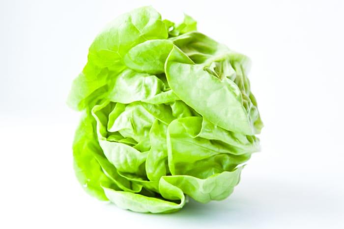 Lettuce - Healthy Hildegard