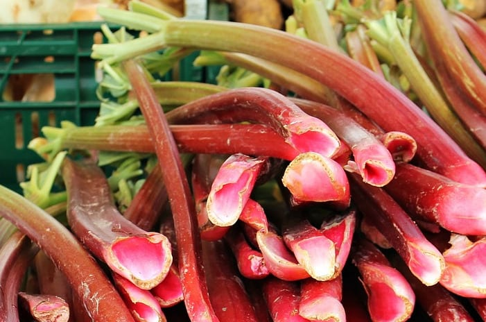 Rhubarb - Healthy Hildegard