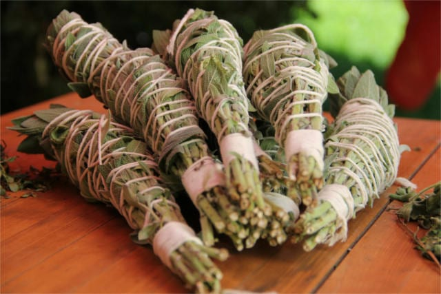 preserve fresh herbs 2