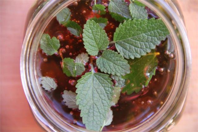preserve fresh herbs 5