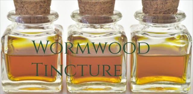 Wormwood Benefits 5