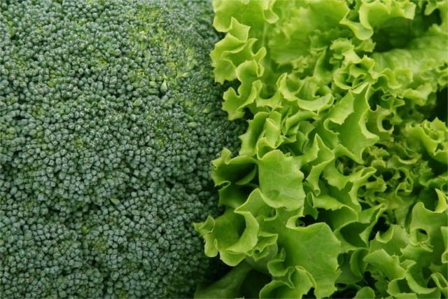 Pollen Allergy: A Holistic Approach - Healthy Hildegard