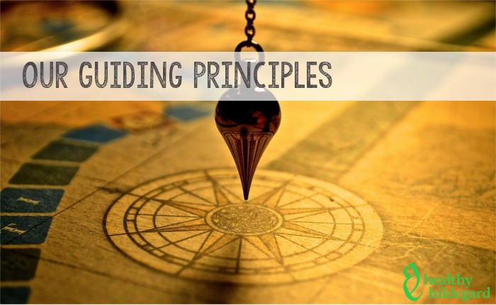 Hildegard principles
