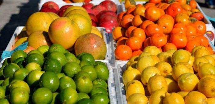 Citrus fruits are bitter foods - Healthy Hildegard