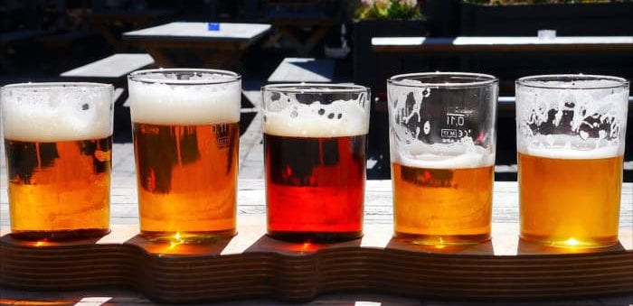 Beer is a source of natural bitters - Healthy Hildegard