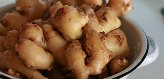 Ginger is a healthy source of bitters - Healthy Hildegard