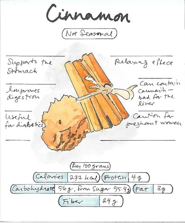 Infographic Cinnamon Healing Herb