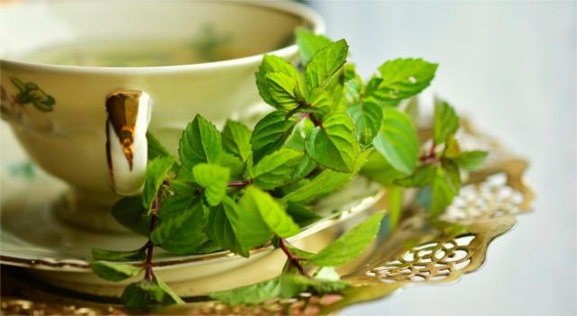 peppermint tea health benefits