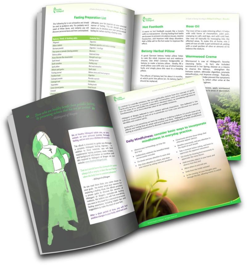 Fasting Book HealthyHildegard 1