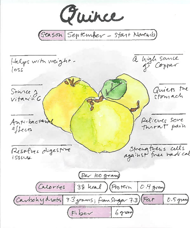 Infographic Quince