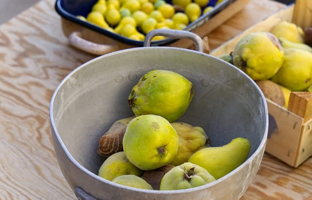 Quince Recipes