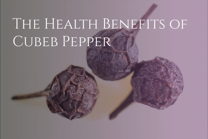 Cubeb Pepper, a medicinal plant used for thousands of years