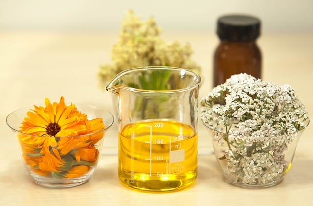 filipendula meadowsweet for skin