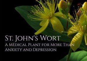 St. John' s Wort Benefits